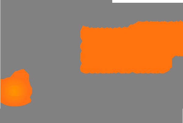 eRevenue Management